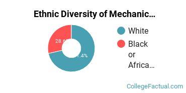 Ethnic Diversity of Mechanic & Repair Technologies Majors at Central Alabama Community College