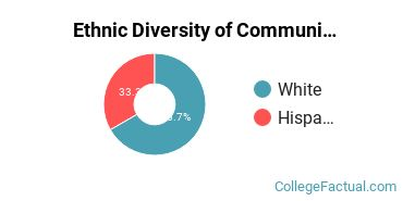 Ethnic Diversity of Communications Technologies & Support Majors at Central Arizona College