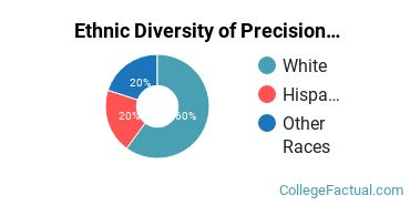 Ethnic Diversity of Precision Production Majors at Central Arizona College