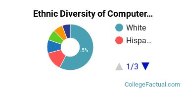 Ethnic Diversity of Computer & Information Sciences Majors at Central Connecticut State University