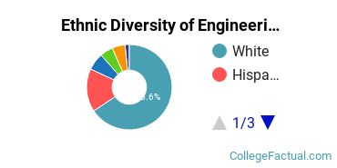 Ethnic Diversity of Engineering Majors at Central Connecticut State University