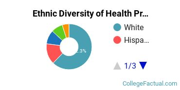 Ethnic Diversity of Health Professions Majors at Central Connecticut State University