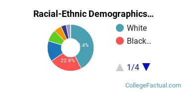 Central Piedmont Community College Undergraduate Racial-Ethnic Diversity Pie Chart