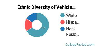 Ethnic Diversity of Vehicle Maintenance & Repair Majors at Centralia College