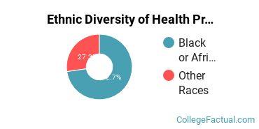 Ethnic Diversity of Health Professions Majors at Centura College - Richmond Main