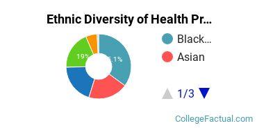 Ethnic Diversity of Health Professions Majors at Chamberlain University - Texas