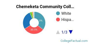 Chemeketa Community College Undergraduate Racial-Ethnic Diversity Pie Chart