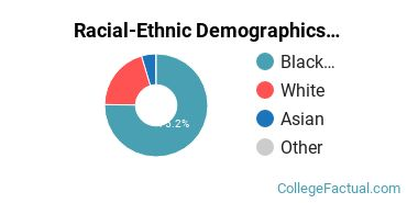 Racial-Ethnic Demographics of CSU Faculty