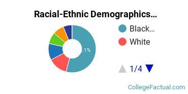 Chicago State University Graduate Students Racial-Ethnic Diversity Pie Chart