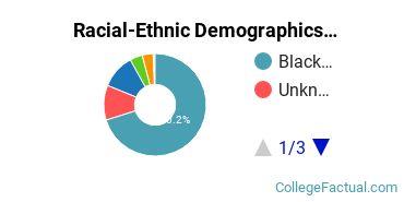 Chicago State University Undergraduate Racial-Ethnic Diversity Pie Chart