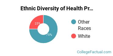 Ethnic Diversity of Health Professions Majors at Chief Dull Knife College