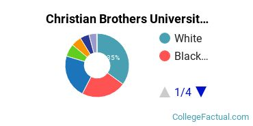 Christian Brothers Undergraduate Racial-Ethnic Diversity Pie Chart