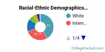 Christian Brothers University Graduate Students Racial-Ethnic Diversity Pie Chart