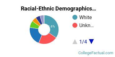 Christian Brothers University Undergraduate Racial-Ethnic Diversity Pie Chart