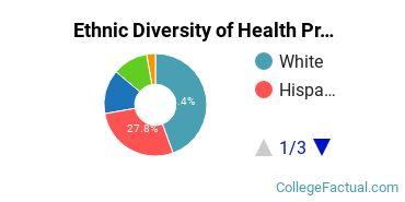 Ethnic Diversity of Health Professions Majors at Clarendon College