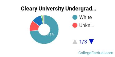 Cleary College Undergraduate Racial-Ethnic Diversity Pie Chart