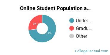 Online Student Population at Clemson University