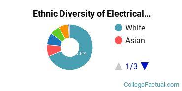 Ethnic Diversity of Electrical Engineering Majors at Clemson University