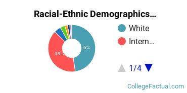 Clemson University Graduate Students Racial-Ethnic Diversity Pie Chart