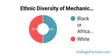 Ethnic Diversity of Mechanic & Repair Technologies Majors at Clovis Community College