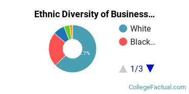 Ethnic Diversity of Business Administration & Management Majors at Coker College