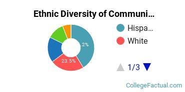 Ethnic Diversity of Communication & Journalism Majors at College of Mount Saint Vincent