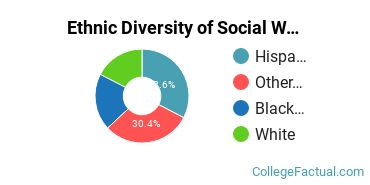 Ethnic Diversity of Social Work Majors at College of Our Lady of the Elms