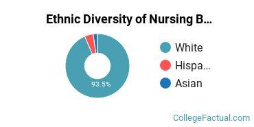 Ethnic Diversity of Nursing Majors at College of Saint Benedict