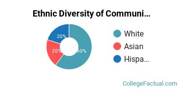 Ethnic Diversity of Communications Technologies & Support Majors at College of the Redwoods