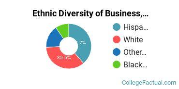 Ethnic Diversity of Business, Management & Marketing Majors at CollegeAmerica - Phoenix