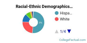 CollegeAmerica - Phoenix Undergraduate Racial-Ethnic Diversity Pie Chart