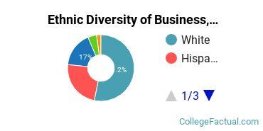 Ethnic Diversity of Business, Management & Marketing Majors at Colorado Christian University