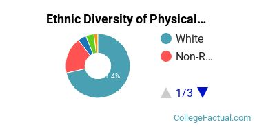 Ethnic Diversity of Physical Sciences Majors at Colorado School of Mines