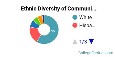 Ethnic Diversity of Communications Technologies & Support Majors at Columbia College Chicago