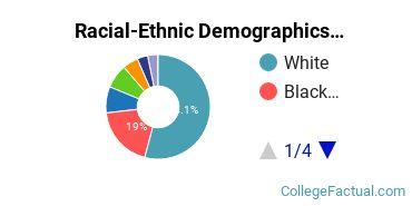 Columbus State Community College Undergraduate Racial-Ethnic Diversity Pie Chart