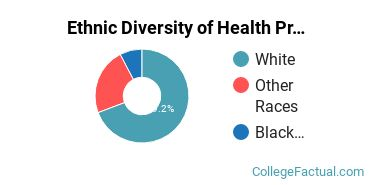 Ethnic Diversity of Health Professions Majors at Commonwealth Technical Institute