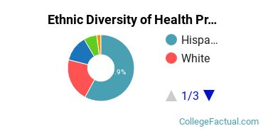 Ethnic Diversity of Health Professions Majors at Concorde Career College-San Bernardino