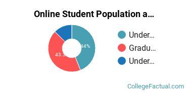 Online Student Population at Concordia University - Ann Arbor