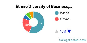 Ethnic Diversity of Business, Management & Marketing Majors at Converse College