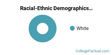 Conway School of Landscape Design Graduate Students Racial-Ethnic Diversity Pie Chart