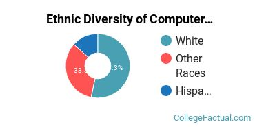 Ethnic Diversity of Computer & Information Sciences Majors at Copper Mountain Community College