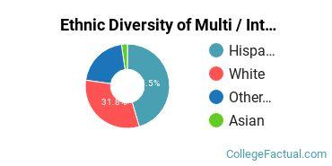 Ethnic Diversity of Multi / Interdisciplinary Studies Majors at Copper Mountain Community College