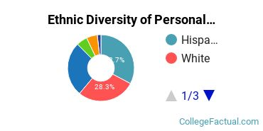 Ethnic Diversity of Personal & Culinary Services Majors at Culinary Institute Inc
