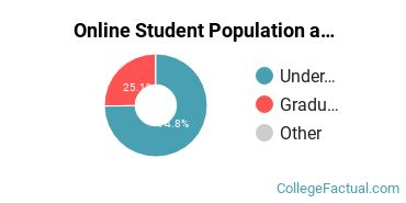 Online Student Population at CUNY Bernard M Baruch College