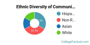 Ethnic Diversity of Communication & Journalism Majors at CUNY Brooklyn College