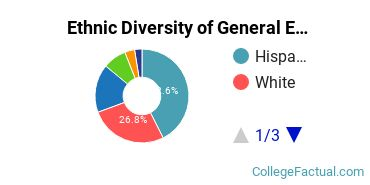 Ethnic Diversity of General English Literature Majors at CUNY Hunter College