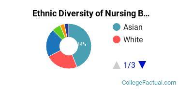Ethnic Diversity of Nursing Majors at CUNY Hunter College