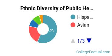Ethnic Diversity of Public Health Majors at CUNY Hunter College