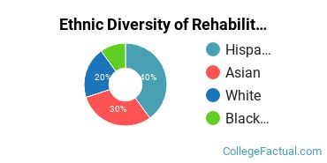 Ethnic Diversity of Rehabilitation & Therapeutic Professions Majors at CUNY Hunter College