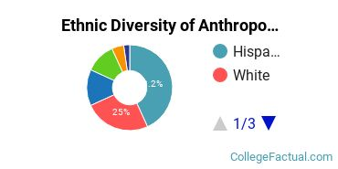 Ethnic Diversity of Anthropology Majors at CUNY Hunter College